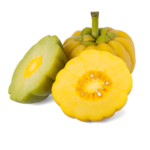 garcinia-cambogia-ingredients