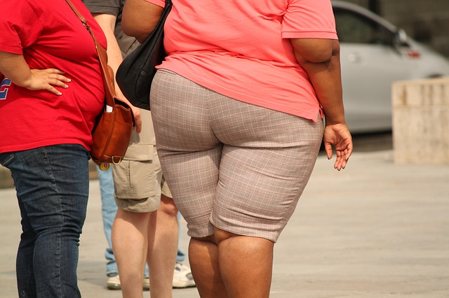 the hazards of obesity